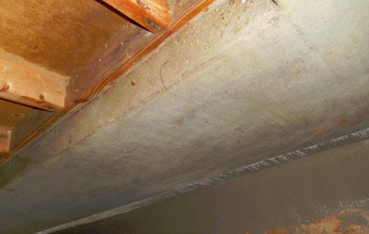 Google Henry Waterproofing - 0425